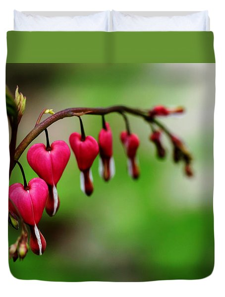 Duvet Cover featuring the photograph Bleeding Hearts Flower Of Romance by Debbie Oppermann