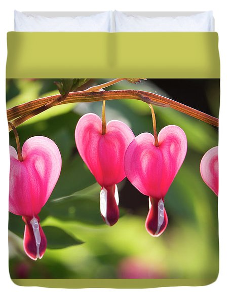 Duvet Cover featuring the photograph Bleeding Hearts by Skip Tribby