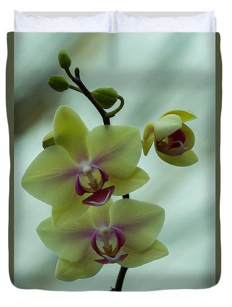 Blessed Blossom Duvet Cover