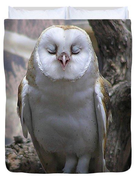 Blinking Owl Duvet Cover