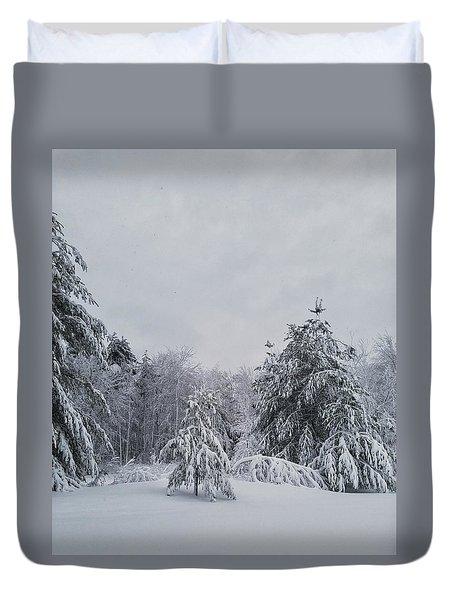 Blizzard In New England Duvet Cover
