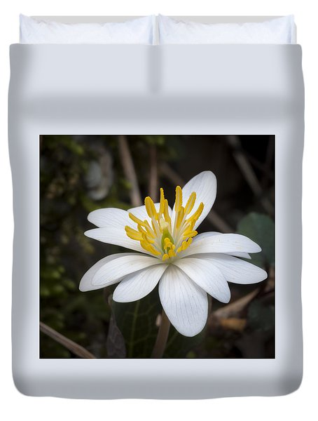 Duvet Cover featuring the photograph Bloodroot by Tyson and Kathy Smith