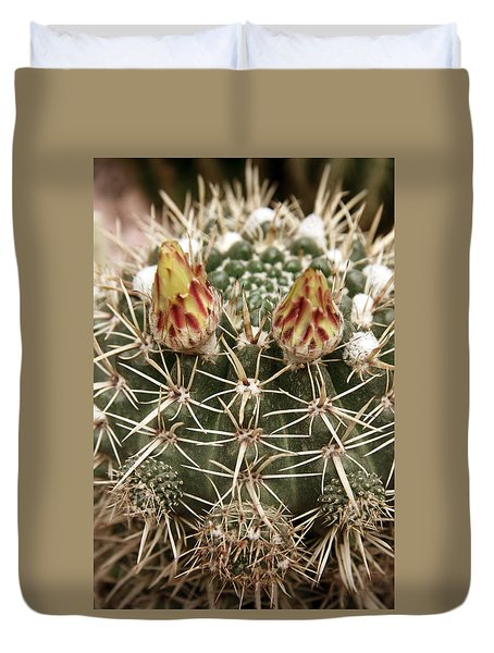 Blooming Cactus1 Duvet Cover