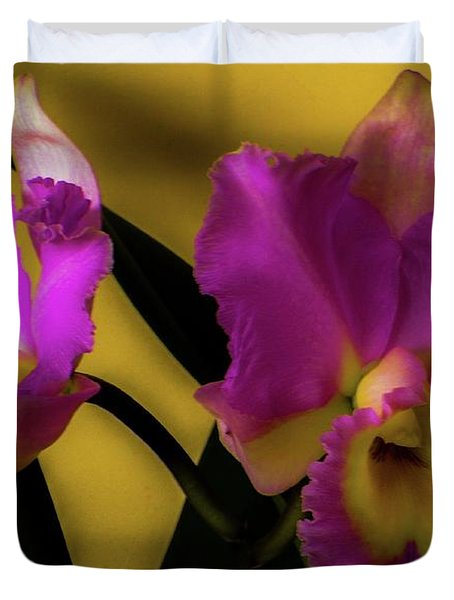 Blooming Cattleya Orchids Duvet Cover