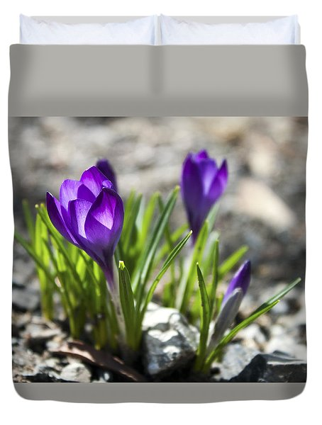 Blooming Crocus #1 Duvet Cover by Jeff Severson
