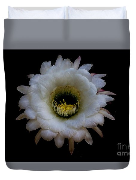 Duvet Cover featuring the photograph Blooming Echinopsis Candicans by Ruth Jolly