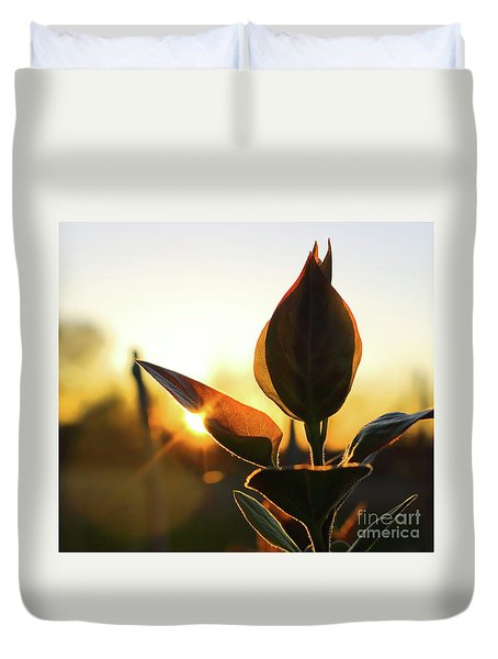 Blooming Lilac At Sunset Duvet Cover