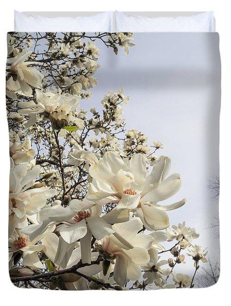 Blooming Magnolia Stellata Star Magnolia Tree Duvet Cover