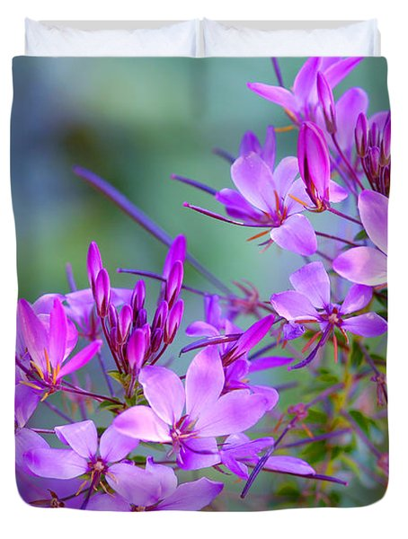 Duvet Cover featuring the photograph Blooming Phlox by Alana Ranney
