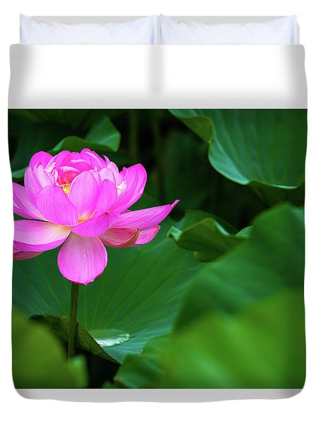 Blooming Pink Lotus Lily Duvet Cover