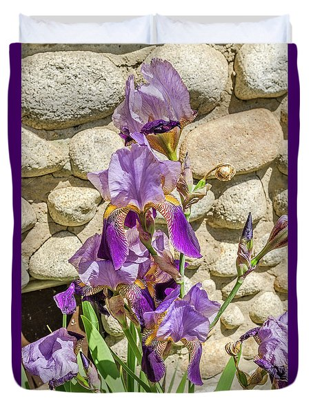 Duvet Cover featuring the photograph Blooming Purple Iris by Sue Smith
