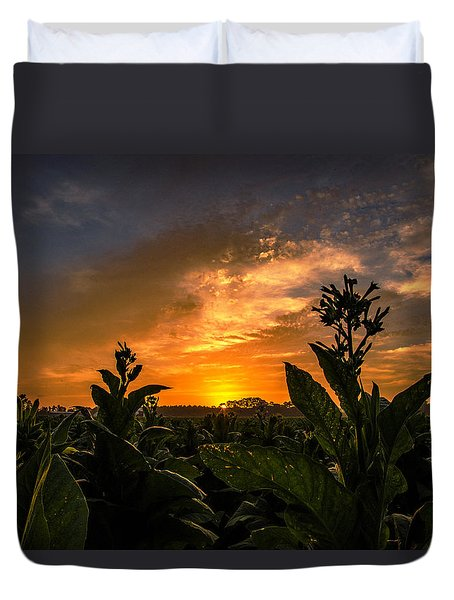 Blooming Tobacco Duvet Cover