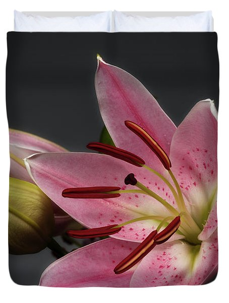 Blossoming Pink Lily Flower On Dark Background Duvet Cover