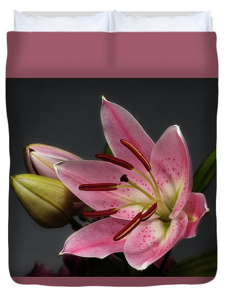 Blossoming Pink Lily Flower On Dark Background Duvet Cover by Sergey Taran