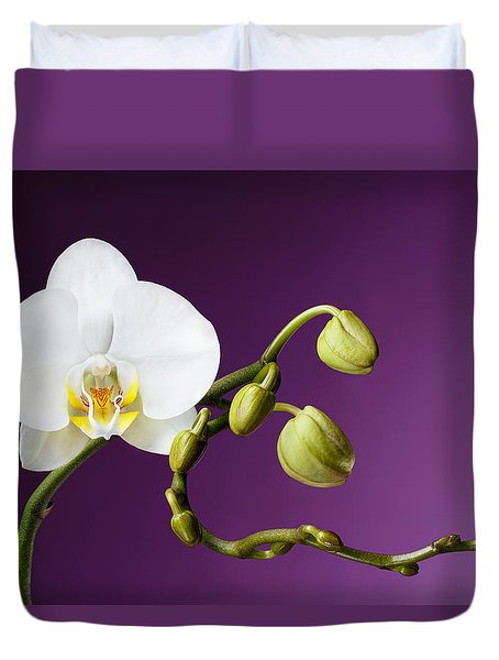 Blossoming White Orchid On Purple Background Duvet Cover by Sergey Taran