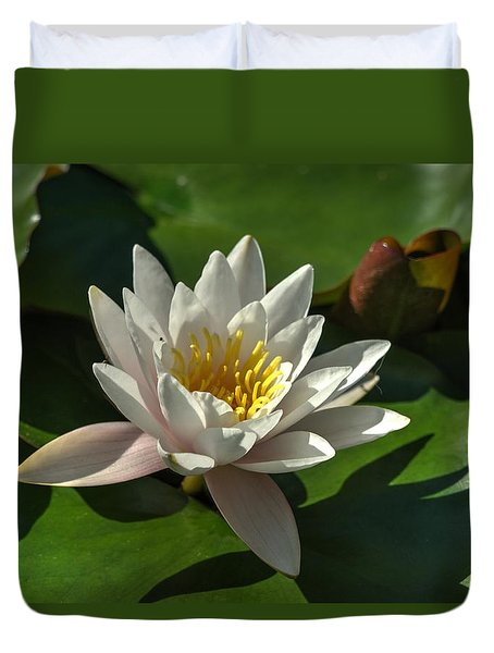 Blossoms And Lily Pads 8 Duvet Cover