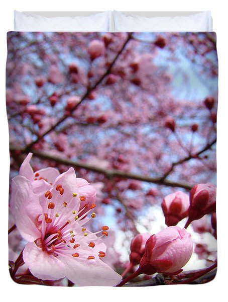 Blossoms Art Blue Sky Spring Tree Blossoms Pink Giclee Baslee Troutman Duvet Cover by Baslee Troutman