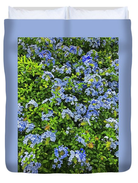 Blossoms Of Phlox Flowers Duvet Cover