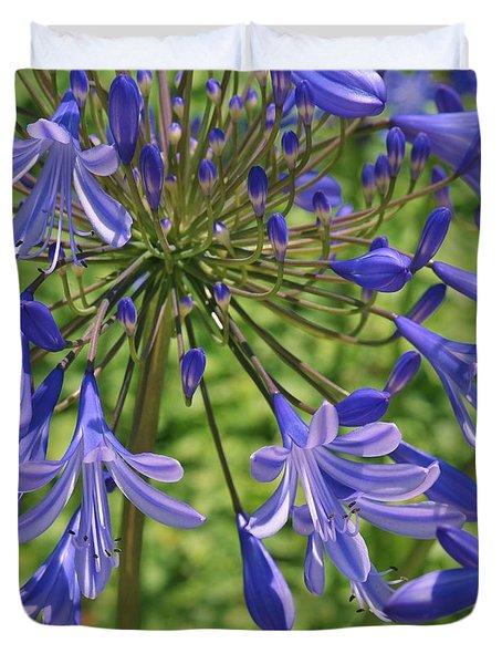 Blue Agapanthus Lily Macro  Duvet Cover