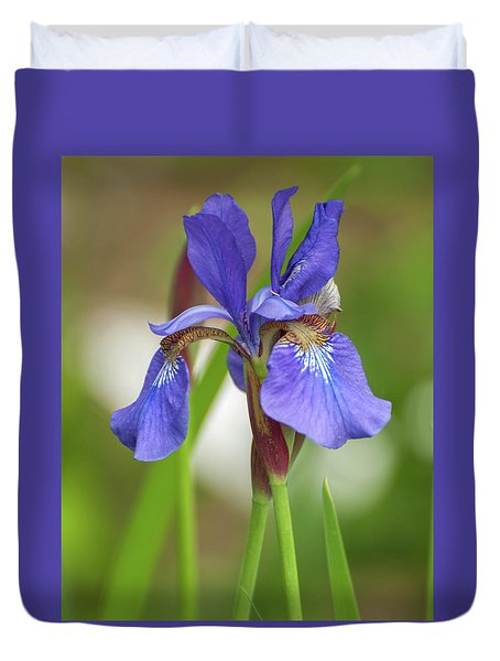 Duvet Cover featuring the photograph Blue Bearded Iris by Brenda Jacobs