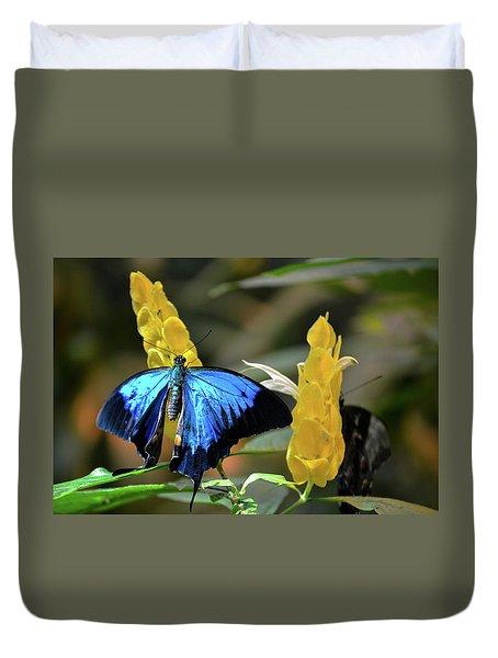 Blue Butterfly Duvet Cover