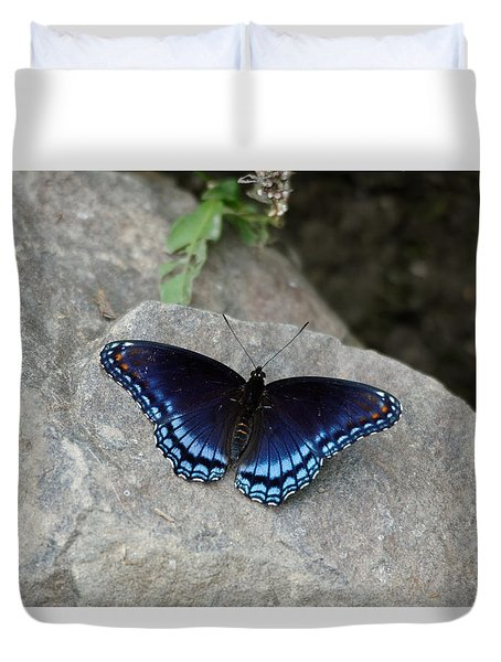Blue Butterfly Duvet Cover