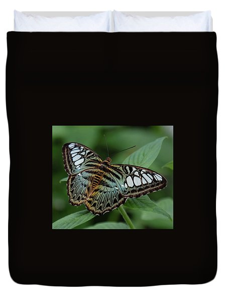 Blue Clipper Butterfly Open Duvet Cover