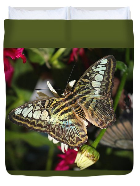 Duvet Cover featuring the photograph Blue Clipper by Living Color Photography Lorraine Lynch