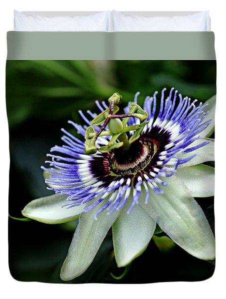 Blue Crown Passion Flower Duvet Cover