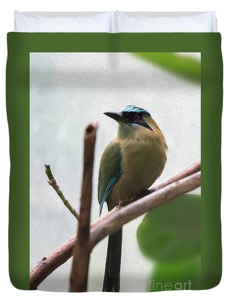 Blue-crowned Motmot Oil Duvet Cover