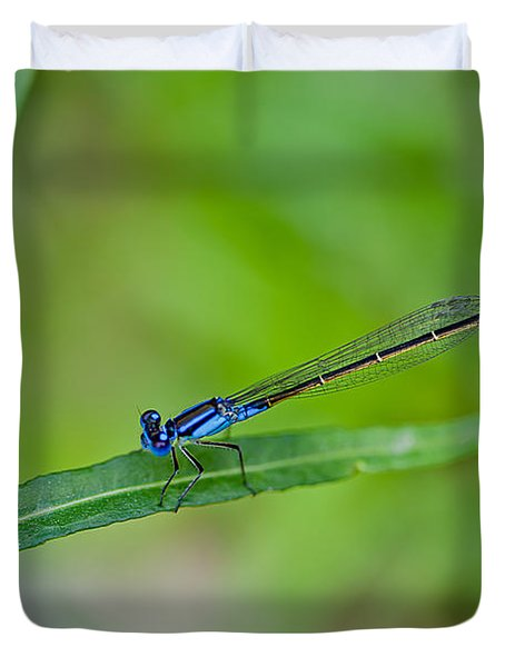Blue Dragonfly Duvet Cover