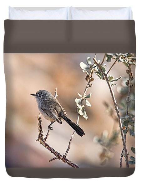 Black-tailed Gnatcatcher Duvet Cover