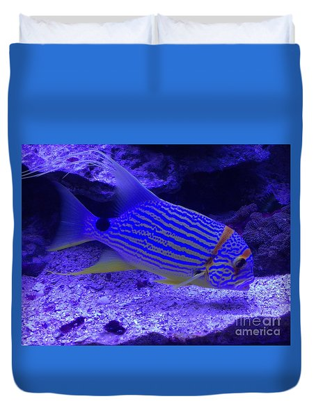 Blue Fish Groupie Duvet Cover by Richard W Linford