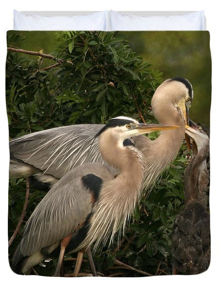 Duvet Cover featuring the photograph Blue Heron Family by Shari Jardina