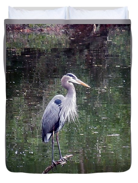 Blue Heron Fishing  Duvet Cover by Don Wright