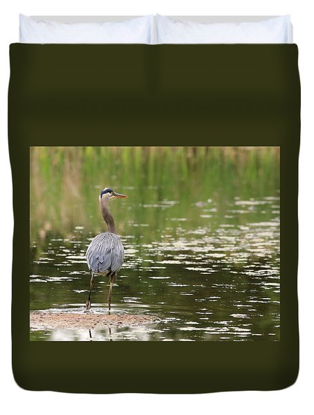 Duvet Cover featuring the photograph Blue Heron From Behind by Lynn Hopwood