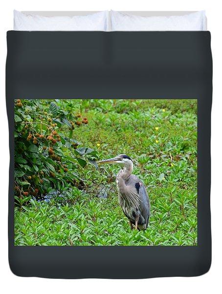 Blue Heron Duvet Cover by Kathy Eickenberg