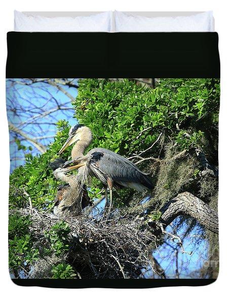 Duvet Cover featuring the photograph Blue Heron Series Baby 1 by Deborah Benoit