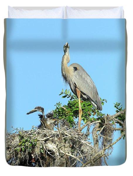 Duvet Cover featuring the photograph Blue Heron Series Baby 2 by Deborah Benoit
