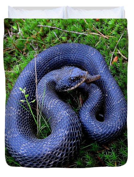 Blue Hognose Duvet Cover
