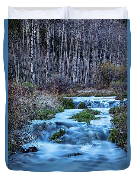 Blue Hour Streaming Duvet Cover by James BO Insogna
