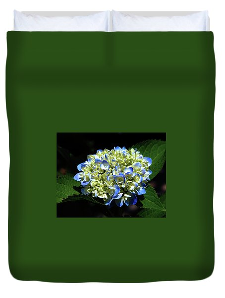Blue Hydrangea Onstage 2620 H_2 Duvet Cover