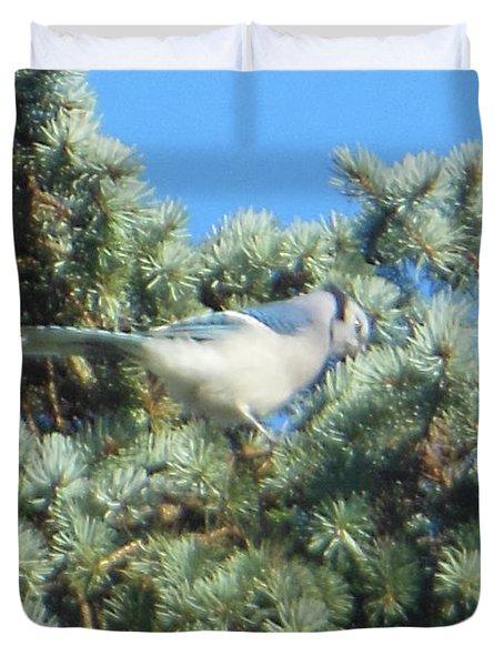 Blue Jay Colorado Spruce Duvet Cover