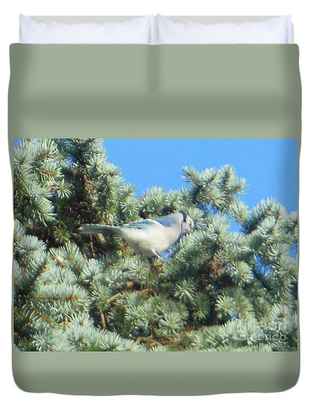 Blue Jay Colorado Spruce Duvet Cover