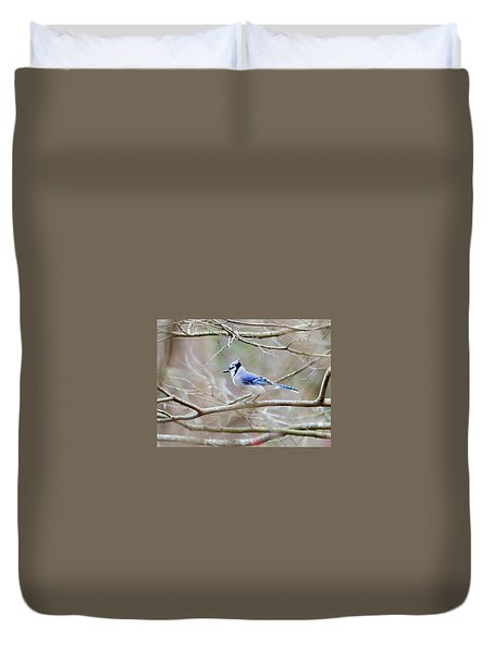 Duvet Cover featuring the photograph Blue Jay by George Randy Bass