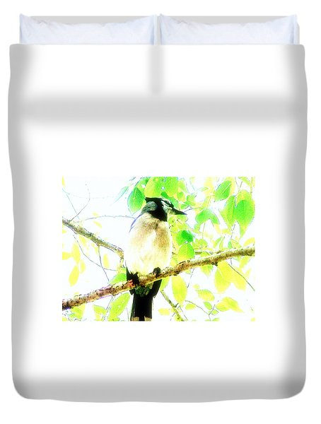 Blue Jay IIi Duvet Cover by Clarice  Lakota