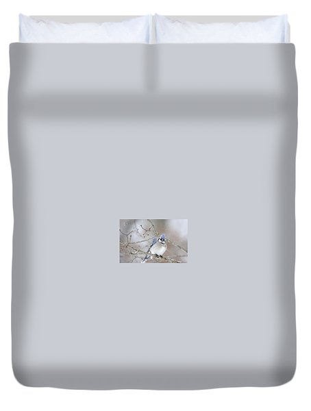 Blue Jay In A Blizzard Duvet Cover
