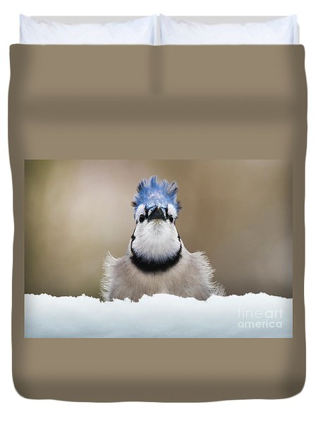 Blue Jay In Snow Duvet Cover