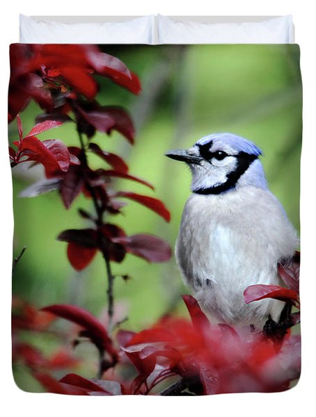 Blue Jay In The Plum Tree Duvet Cover