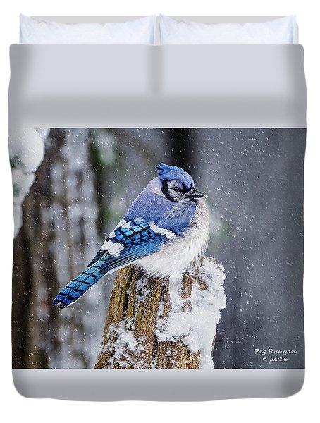 Blue Jay On Snowy Post Duvet Cover